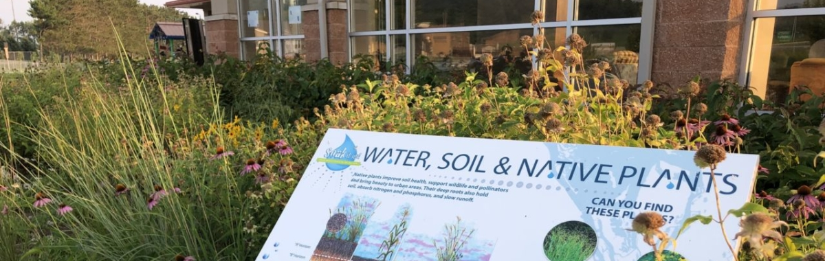 Stormwater Learning Site